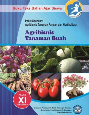 Agribisnis Tanaman Buah
