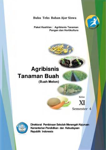 Agribisnis Tanaman Buah Melon