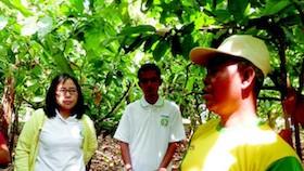 Berkat Cocoa Life, petani bangkit lagi