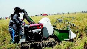 Saatnya menerapkan precision farming