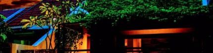 Rumah beratap hijau