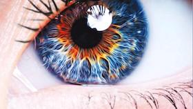 Si kelopak mata yang harus terus dijaga