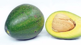 Buah sarat serat, mineral & vitamin, avokad