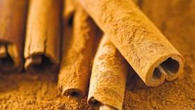 Herbal alami pengontrol gula darah