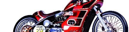 Harley-Davidson sportster 1200, 2004