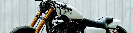 Harley-Davidson Sportster 1200 2005, sporty cafe racer