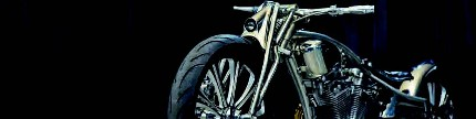 Harley-Davidson Softail Evolution 1996, best of the best