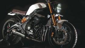 Kawasaki ER-6n 2011, Bali, naked bike, modern classic