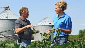 Koperasi di balik industri pertanian AS