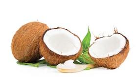 Rupa-rupa kelapa