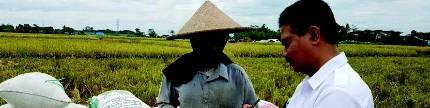Angka kemiskinan turun, sektor pangan peran utamanya