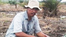 Wiji Astrianto, pioner semangka dari tanah Riau