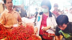 17 Kabupaten siap banjiri cabai ke DKI Jakarta
