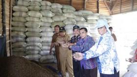 Menggenjot produksi pakan berbahan limbah sawit