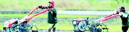 Klaim asuransi lancar, petani bisa tanam kembali