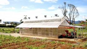 Inilah cara menjaga kualitas bawang merah