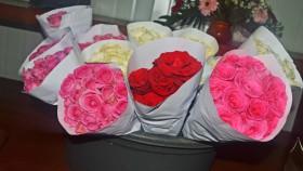 Kenali penyakit pada bunga mawar