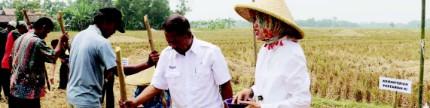 Jawa Barat, berpacu mengejar target LTT