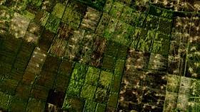 Teknologi drone, lebih mudih verifikasi data pertanian