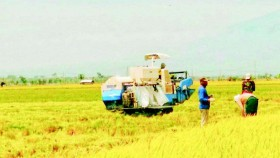 UPJA Rina Karya, tambah combine harvester untuk ekspansi usaha