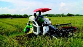 Mengubah mindset petani untuk optimalisasi penggunaan Alsintan