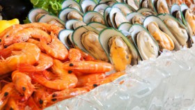 Fresh seafood dinner at rasa restaurant