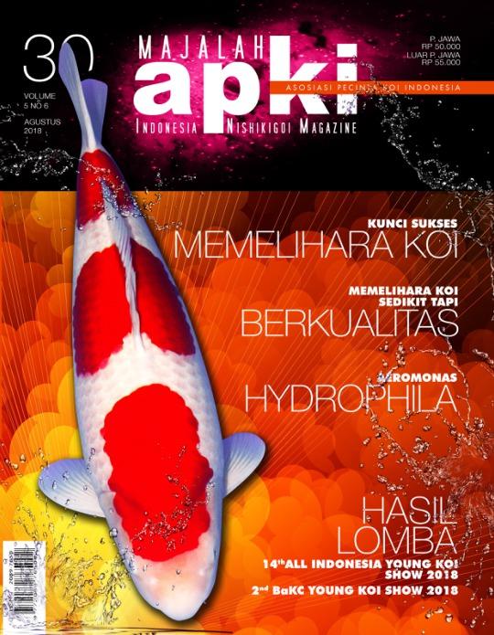 Majalah Apki - edisi 30